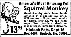 1-marvel-monkey-ad